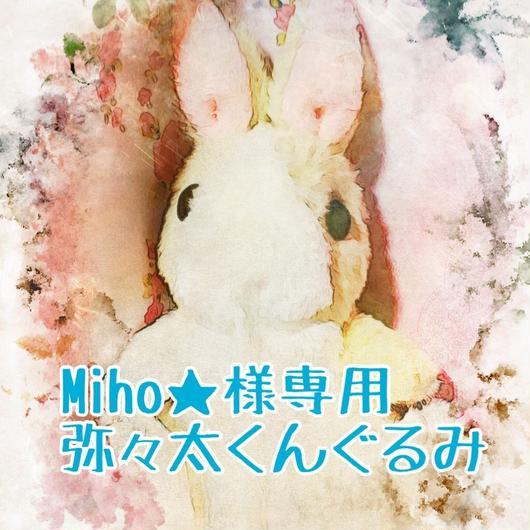 Miho★様専用弥々太くんぐるみ