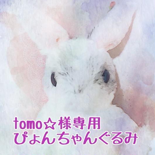 tomo☆様専用ぴょんちゃんぐるみ