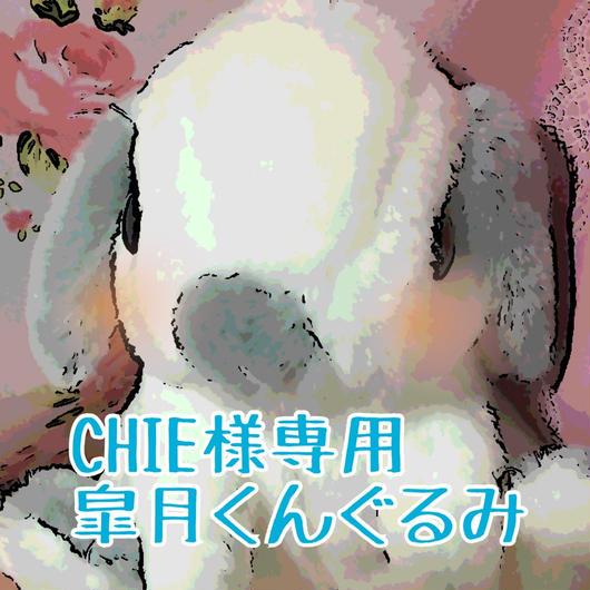 CHIE様専用皐月くんぐるみ