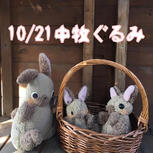 10/21お渡し中牧ぐるみ