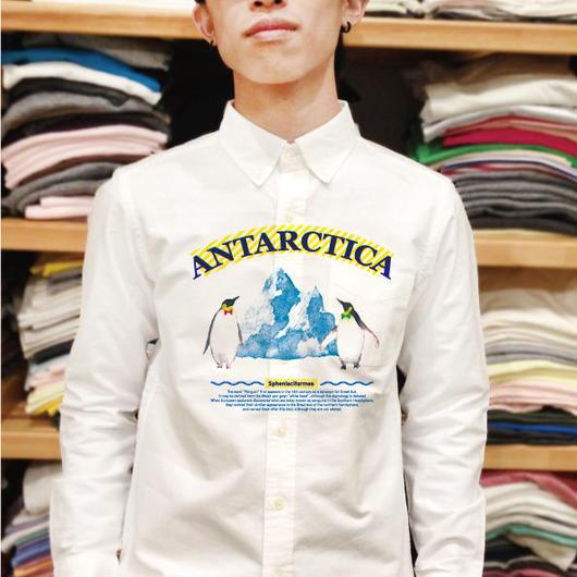 Y 0768 南極とペンギン