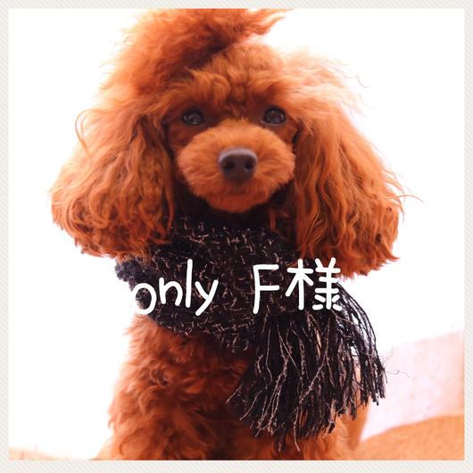 F様専用🐶【新作✨手織り スヌード】わんこ用・パーティナイト