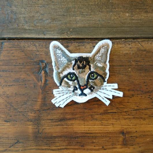 猫ワッペン トラ柄 小