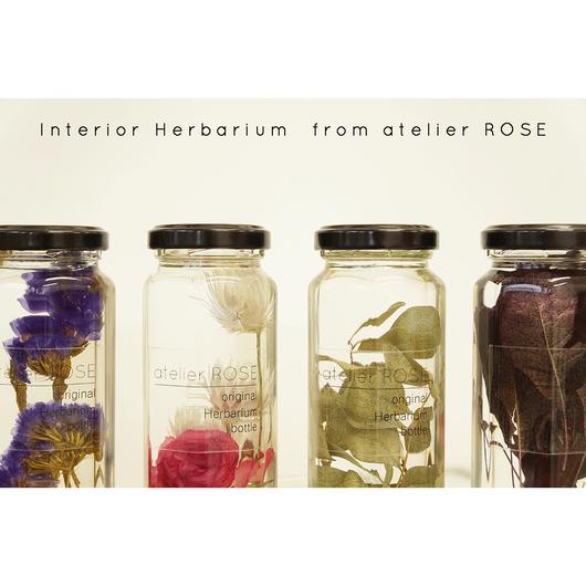 interior herbarium 02