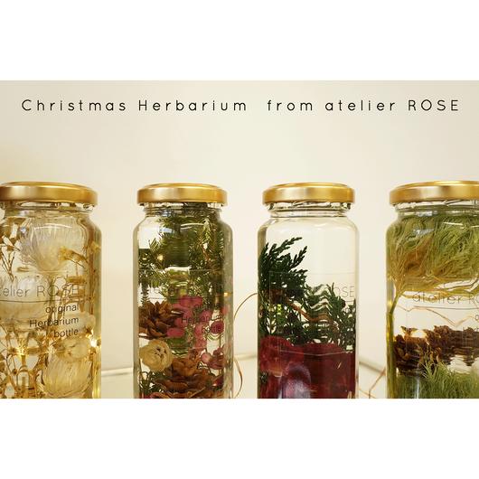 interior herbarium 01