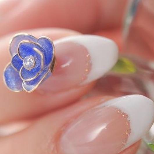 薔薇 blue