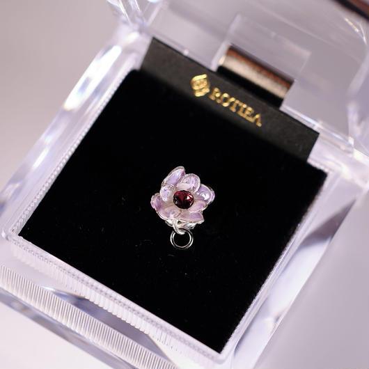 Spring紫陽花
