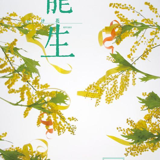 月刊『いけ花龍生』2017年5月号