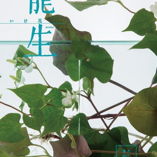月刊『いけ花龍生』2017年8月号