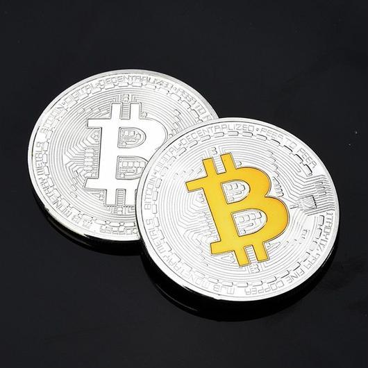 ビットコイン シルバーカラーコイン 2013年