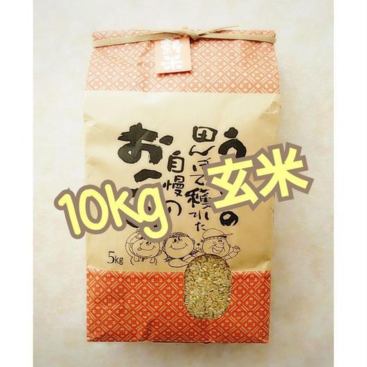 ♯0《お結び米》10キロ 玄米