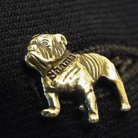 "push pin ""Shams bulldog"""