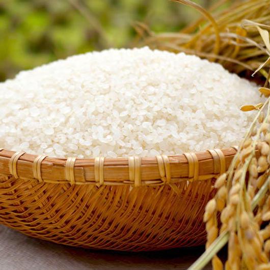 くにみ米(天のつぶ特別栽培米2kg)