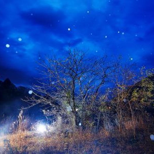 12月9日(土)16:00−18:30「第二部 外でのストロボ風景」(初級〜) 講師:閃光フォトグラファー 小山光弘