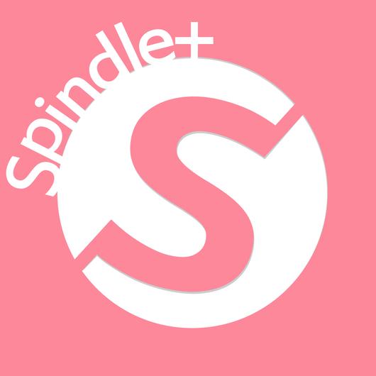 2015 Spindle+ パレード募金