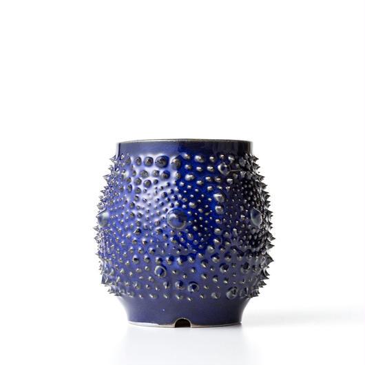 植木鉢:圭介窯【トゲモノ】KG-139