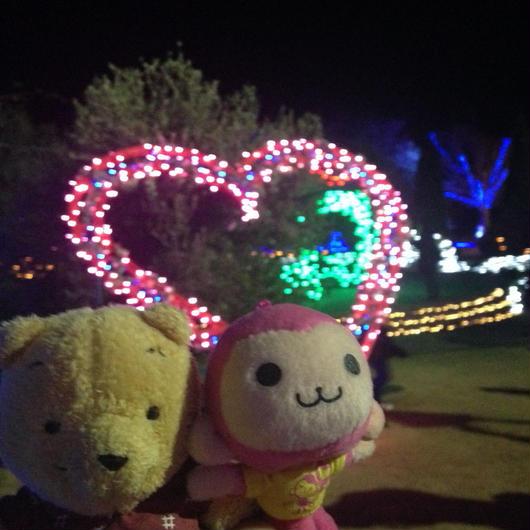 【クリスマス企画】イルミネーションツアー