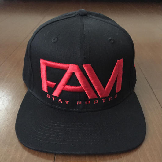 "FAM HAWAII ""LOGO"" Hat Black / Red"