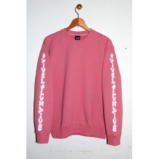 SSD all bones sweat pk