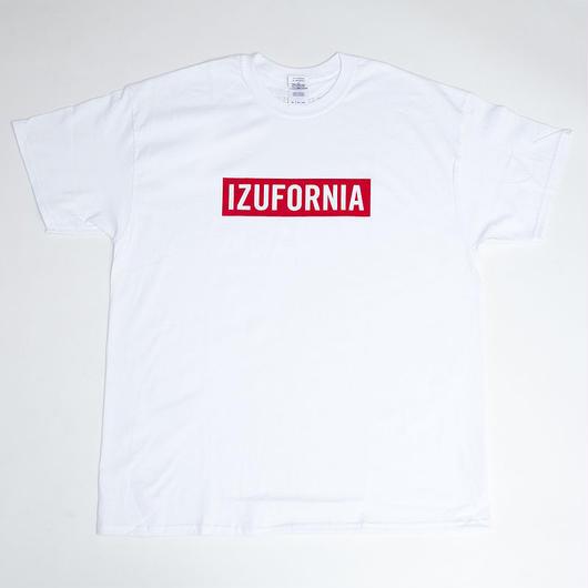 IZUFORNIA 001
