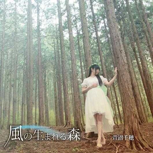 【通常版】3rdシングルCD「風の生まれる森」