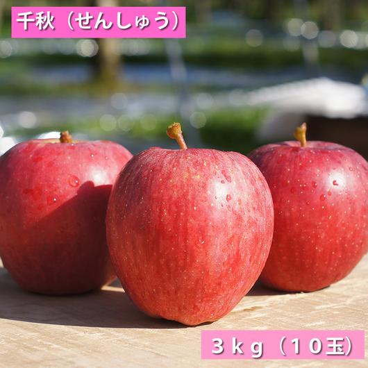 【送料無料】「千秋」3kg(約10玉)【青森県産りんご:家庭用】