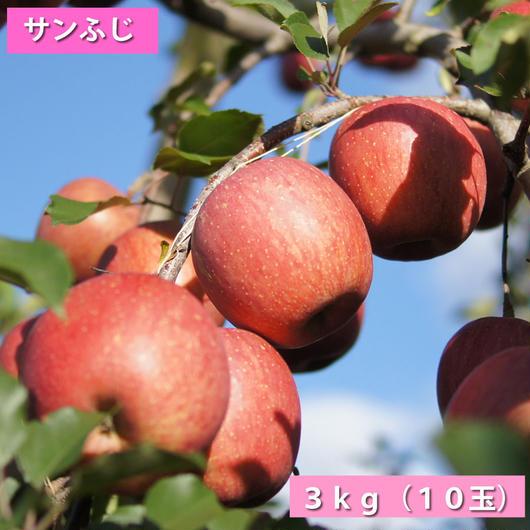 【送料無料】「サンふじ」3kg(約10玉)【青森県産りんご:家庭用】