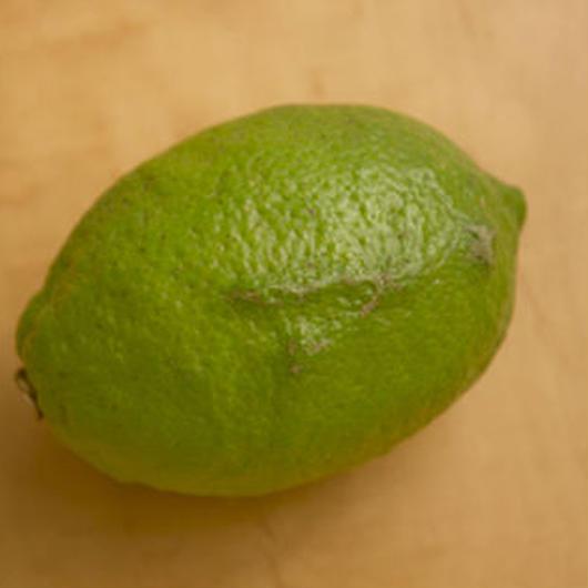 【再販開始!】リスボンレモン(青レモン) 1kg