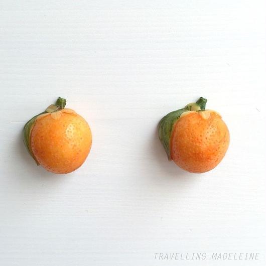 オレンジ クリップイヤリング Orange Clip Earrings (Su18-184E)