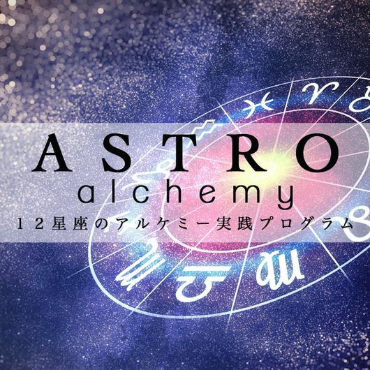 12星座のアルケミープログラム