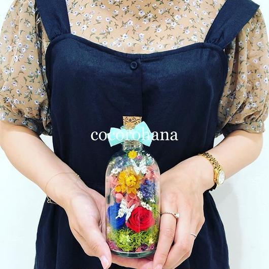 Bottle flower cocorohana Mademoiselle order