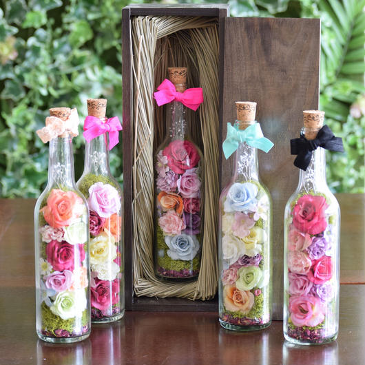 Bottle Flower cocorohana order S