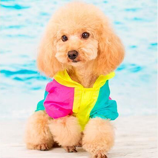 犬服 夏 薄手 切り替え UVカットTシャツ 日焼け防止