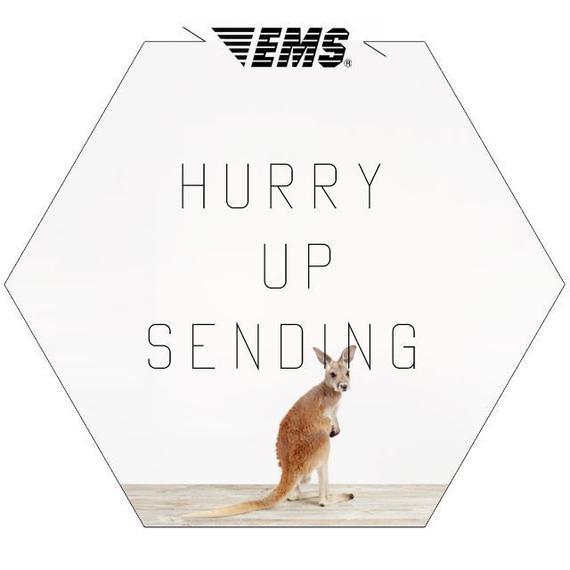 +add___EMS service