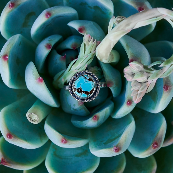WÃVŸ  Mystery turquoise collection