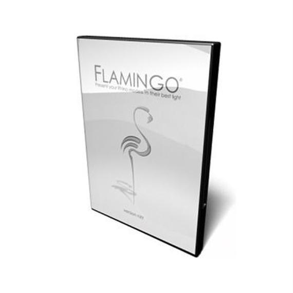 Flamingo アカデミック版アップグレード