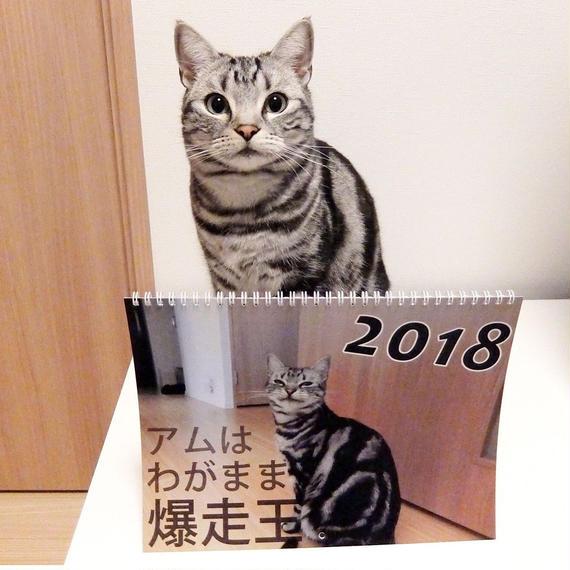 2018壁掛けカレンダー