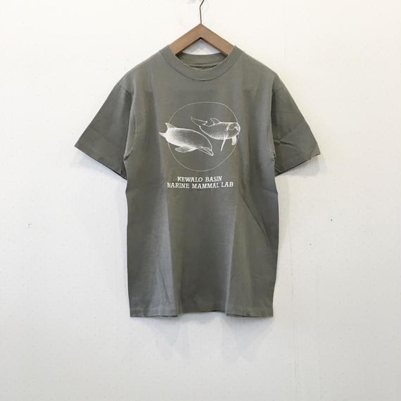 used animal TS