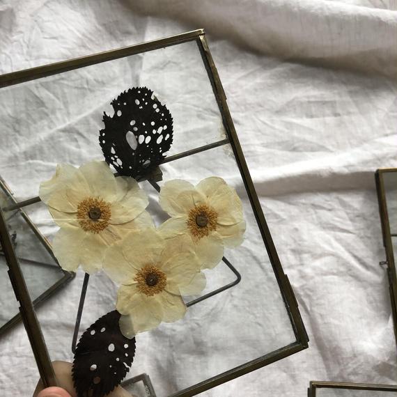 flower Photo flame=置型 rectangle white flower=