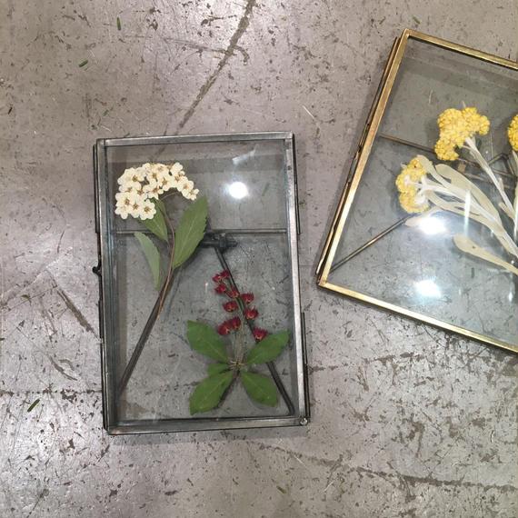 flower Photo flame=置型 M=