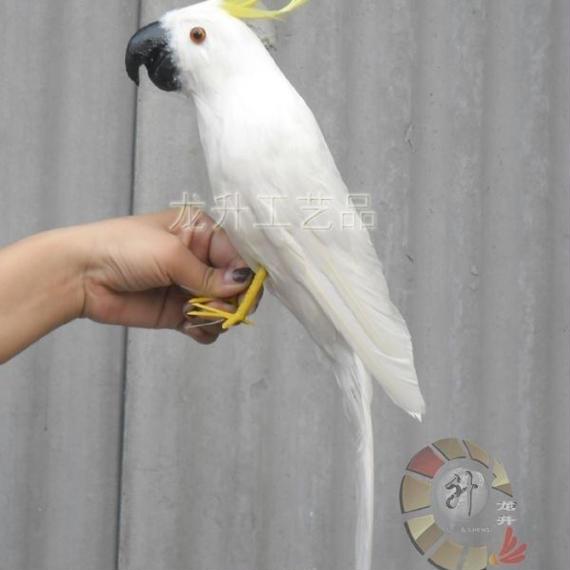 【送料無料!】リアルな鳥の人形 キバタン オウム ドール ぬいぐるみ 43cm 鳥 バード 置物 オブジェ かわいい 本物の鳥の羽 白い鳥 鳥好きの方にも【新品】