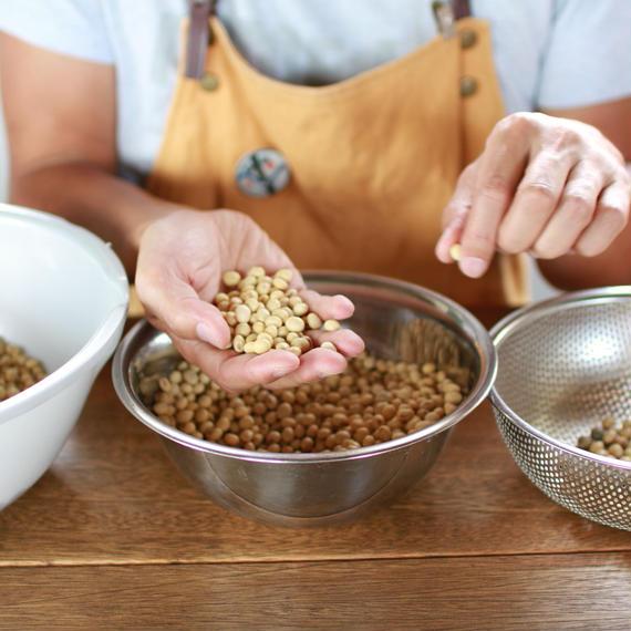 無農薬・無肥料 大豆 2kg