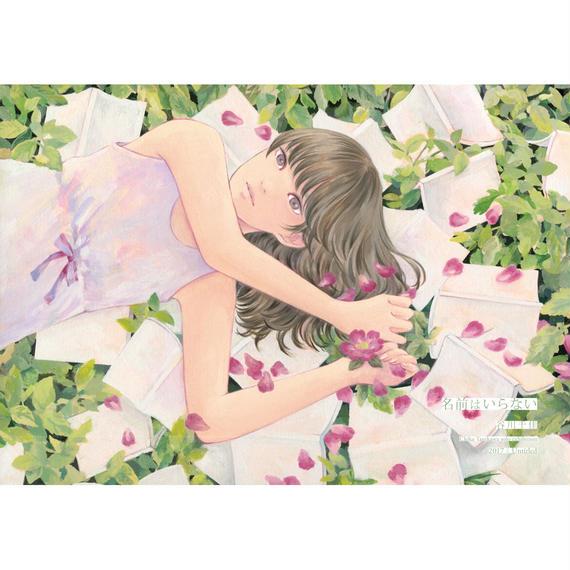 谷川千佳 画集「名前はいらない」