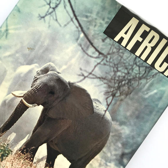 Title/ Africa Author/ Emil Schulthess