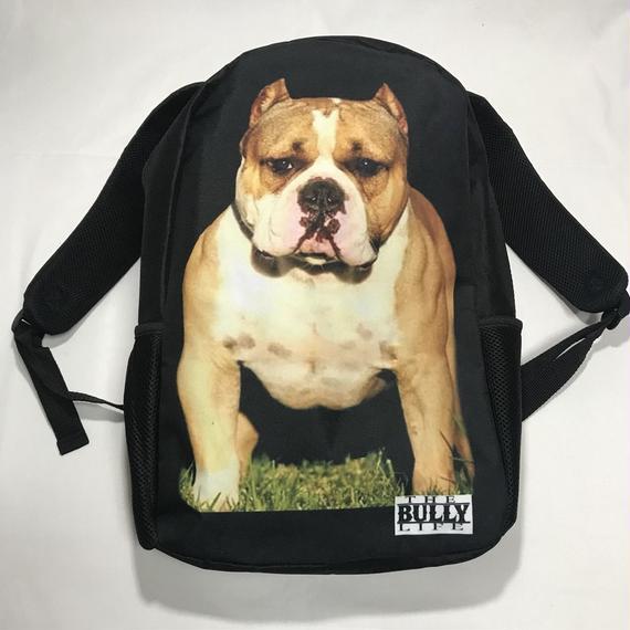 THE BULLY LYFE CLOTHING  / ブリー バックパック②