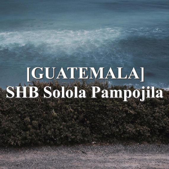 [GUATEMALA] SHB Solola Pampojila  (100g)