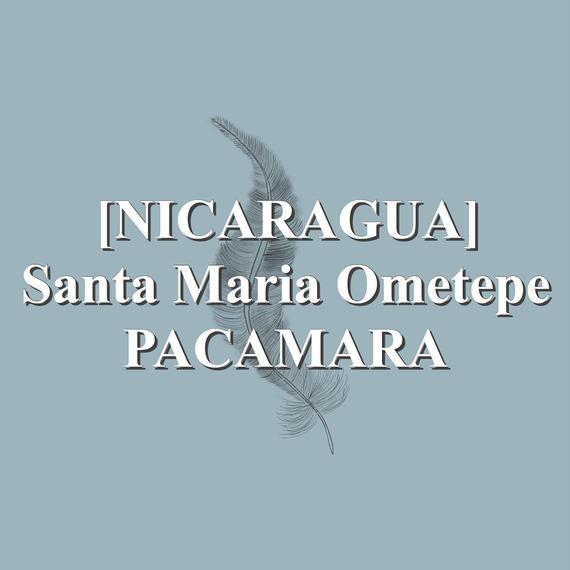 [NICARAGUA] Santa Maria Ometepe PACAMARA  (100g)