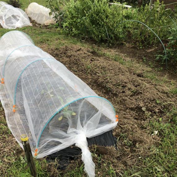 【E-MYFARM 区画No. 040】東京都足立区 いこうファーム野菜栽培区画