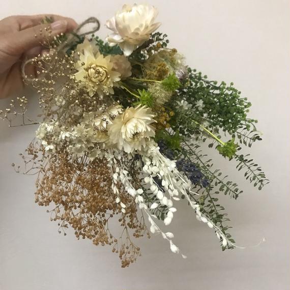 Lsize dryflower