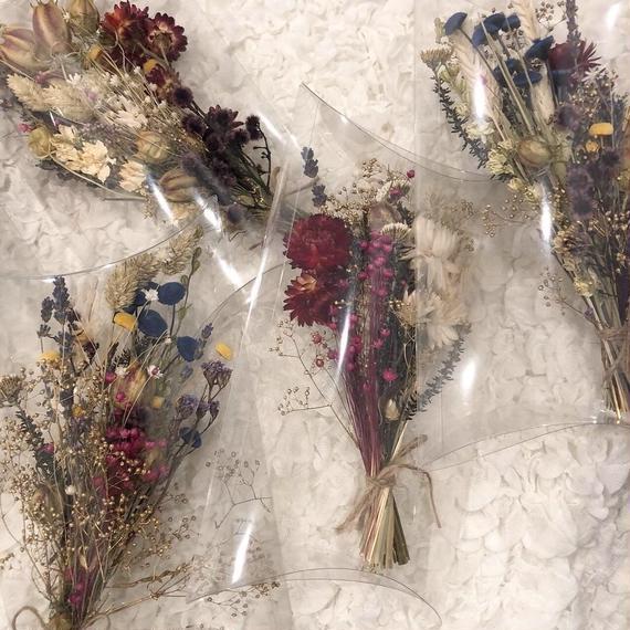 Msize dryflower